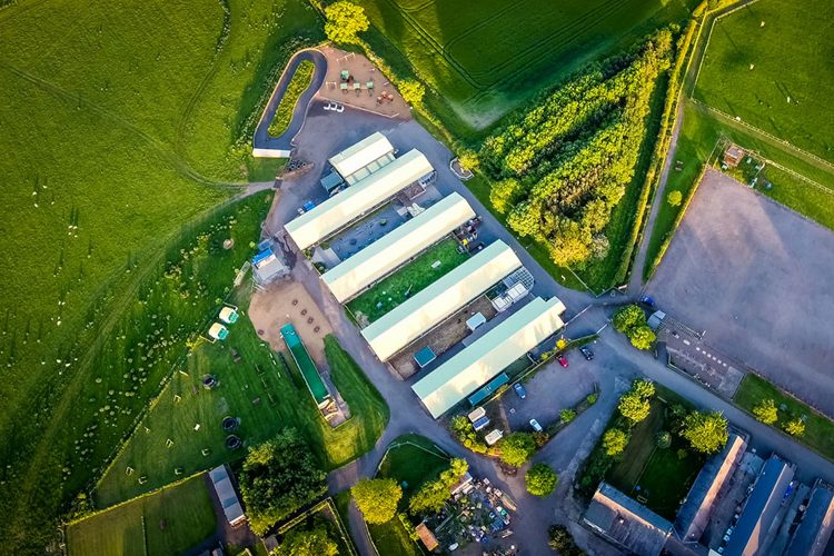 djm-aerial-solutions-services-agriculture-farming-drone-image-NDVI-agricultural-crop scouting